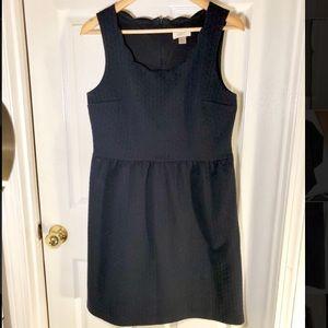 LOFT Navy Embellished Scalloped Dress
